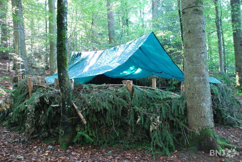 Le canapé forestier du Bois-du-Couvent