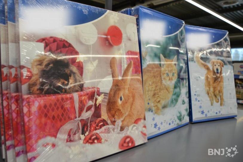 Calendrier De Lavent Pour Animaux.Commentaire Les Animaux De Compagnie Ont Aussi Leur