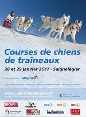 Courses de chiens de traîneaux et fête du chien nordique