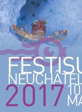 Festisub 2017