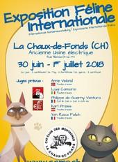 Exposition Féline