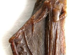 Sceau utilisé par l'évêque Lüthold de Röteln après son élection par le chapitre de Bâle mais avant sa confirmation par le pape: il est représenté debout, sans mitre et sans crosse.