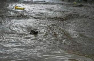 inondations Buix