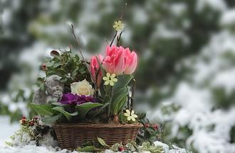 L'hiver arrive gentiment