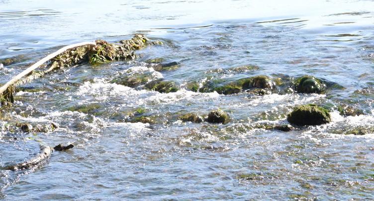 Une pollution aux hydrocarbures à Soyhières