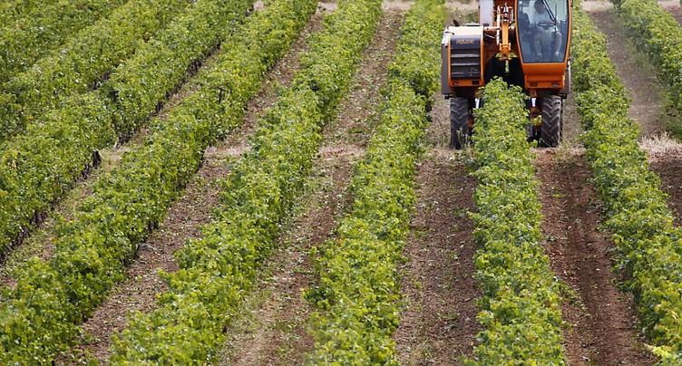 Réduire les pesticides nuit rarement à la productivité (étude)