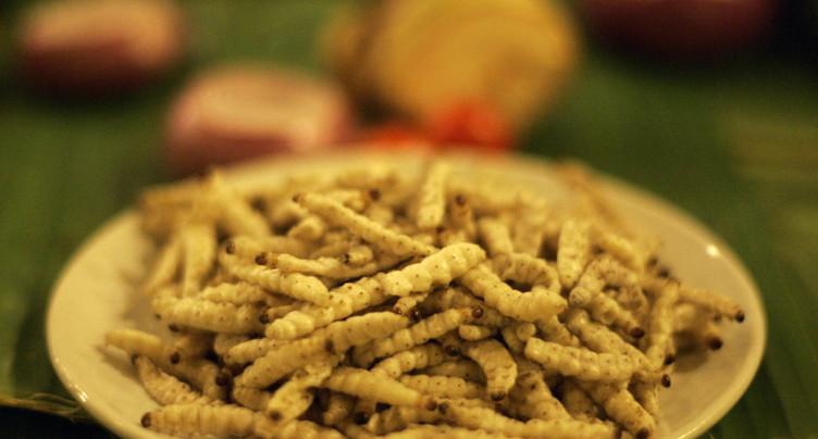 Seule une personne sur dix est décidée à manger des insectes