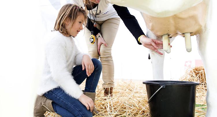 Le président des producteurs de lait fait l'éloge de l'unité