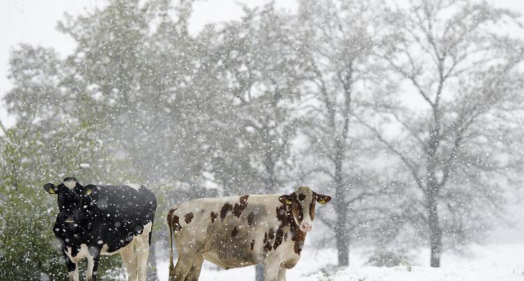Le retour de la neige sème la pagaille en Suisse alémanique