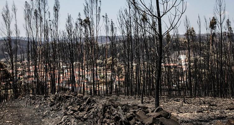 Les pompiers ont maîtrisé les principaux feux de forêt au Portugal