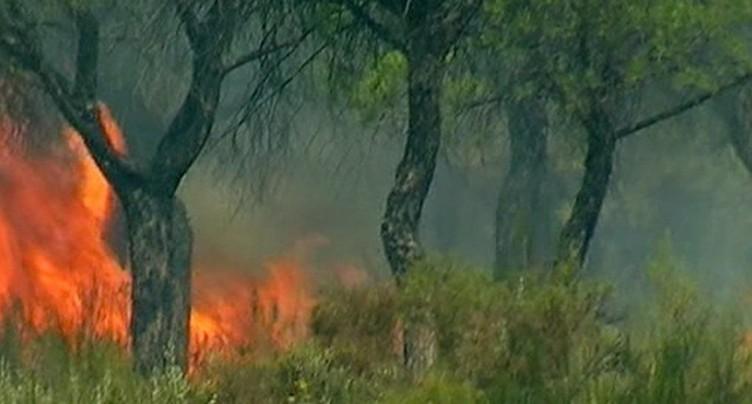 Un incendie dans le sud-ouest de l'Espagne entraîne des évacuations
