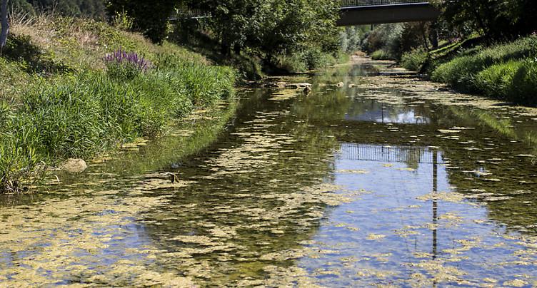 De nombreux cantons interdisent le pompage dans les cours d'eau