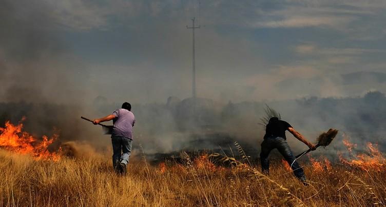 Après une courte accalmie, les feux de forêt reprennent au Portugal