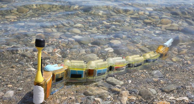 Un robot-anguille pour traquer les sources de pollution