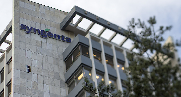 Syngenta voit son bénéfice semestriel reculer de 13%