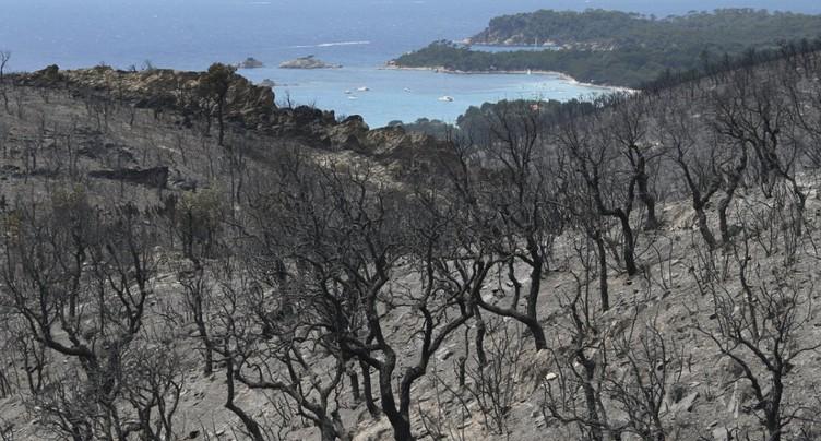 Accalmie sur le front des incendies en France (sud-est)