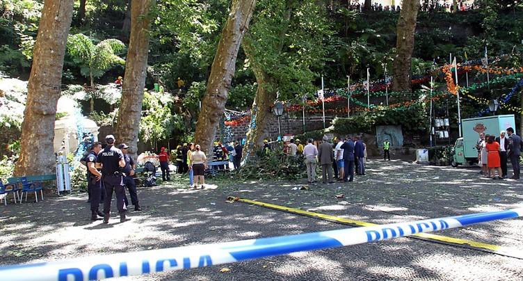 Portugal: la chute d'un arbre fait treize morts à Madère
