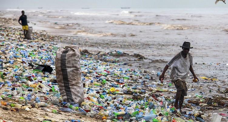Les débris de plastique ont l'odeur de la nourriture (étude)