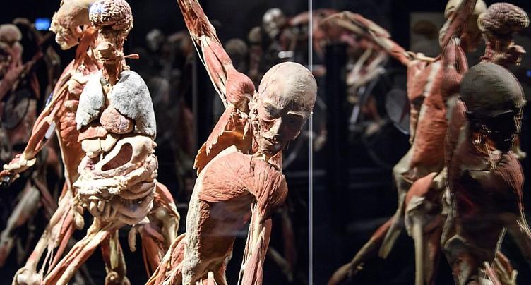 L'exposition Body Worlds ouvre ses portes sur fond de polémique