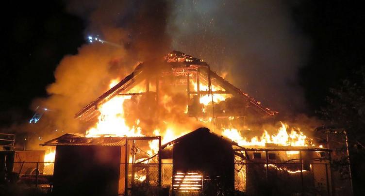 Plusieurs animaux périssent dans les flammes à Fahrwangen (AG)