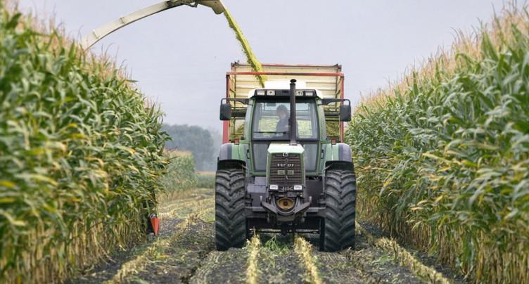 Le large « oui » est vu comme est un soutien à l'agriculture indigène