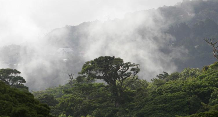 Milliards de tonnes de CO2 en moins grâce à une meilleure gestion