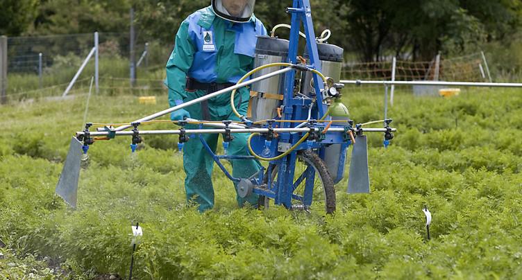 Le Conseil fédéral adopte les nouvelles ordonnances agricoles 2017