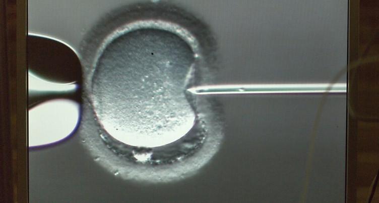 Une femme devrait pouvoir congeler ses ovules plus longtemps