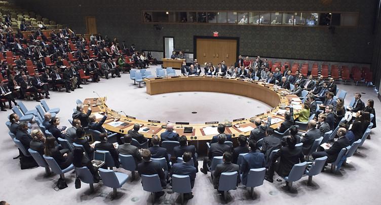 Veto russe à la résolution américaine sur l'utilisation d'armes chimiques en Syrie