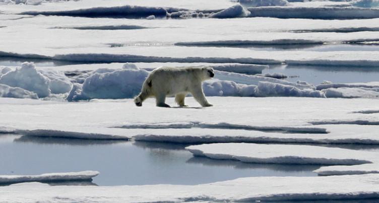 Accord à la COP23 pour évaluer en 2018 les émissions de CO2