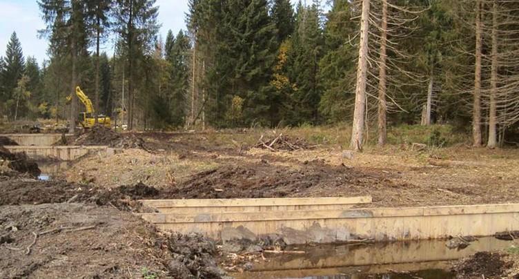 Remise en eau des hauts-marais pour protéger le climat