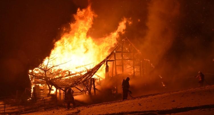 Une quarantaine d'animaux périssent dans un incendie à Amden (SG)