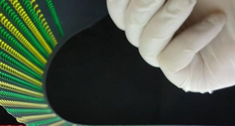 Batterie biocompatible inspirée de l'anguille électrique