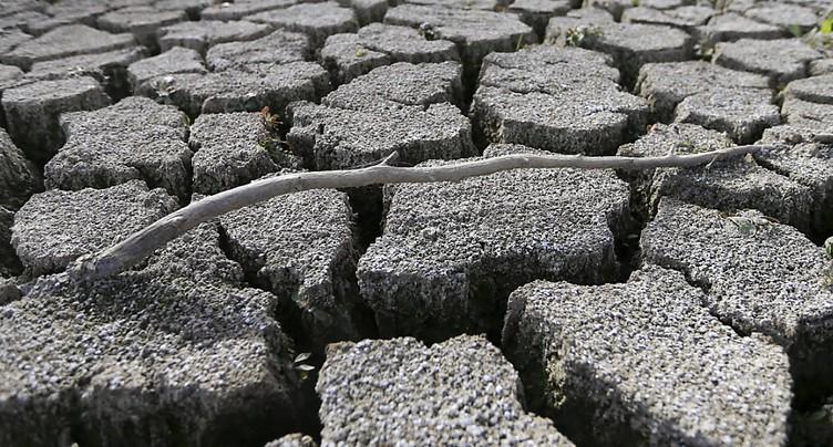 Réchauffement climatique, seul responsable de la canicule en 2016