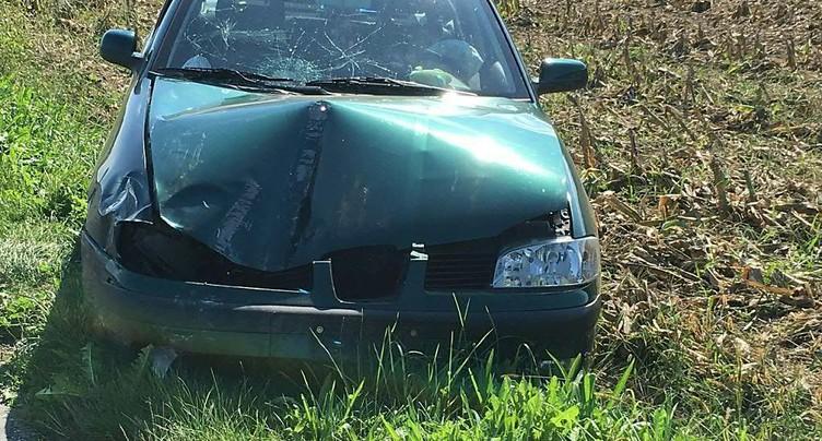 Fillette tuée: un automobiliste condamné à 30 mois de prison