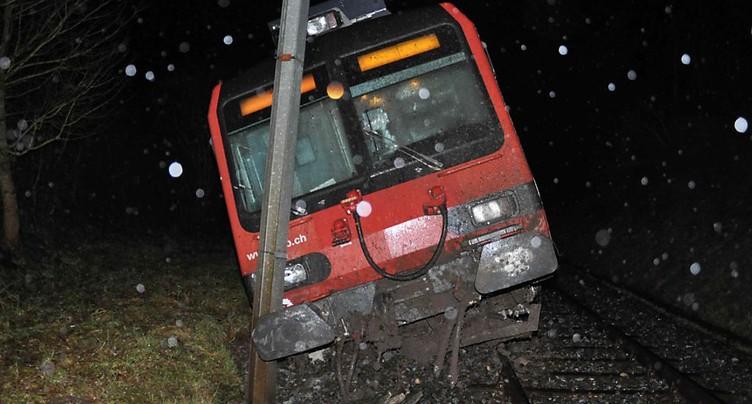 Une coulée de boue fait dérailler un train à Lommiswil (SO)