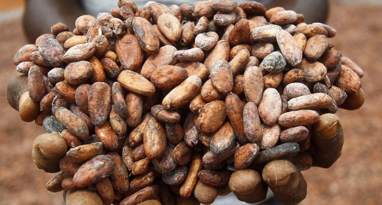 Barry Callebaut a souffert des baisses de prix au 1er trimestre