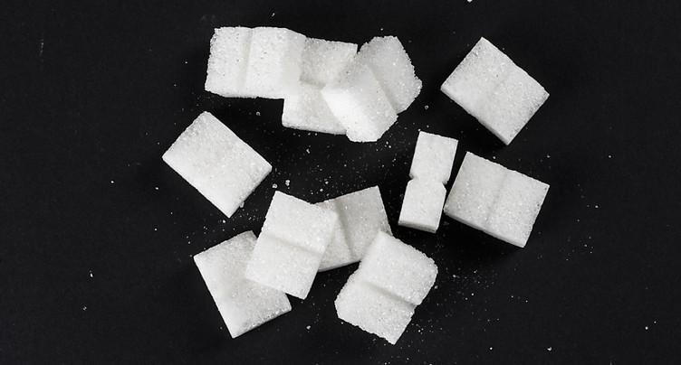 L'USP demande des mesures pour sauver la production suisse de sucre