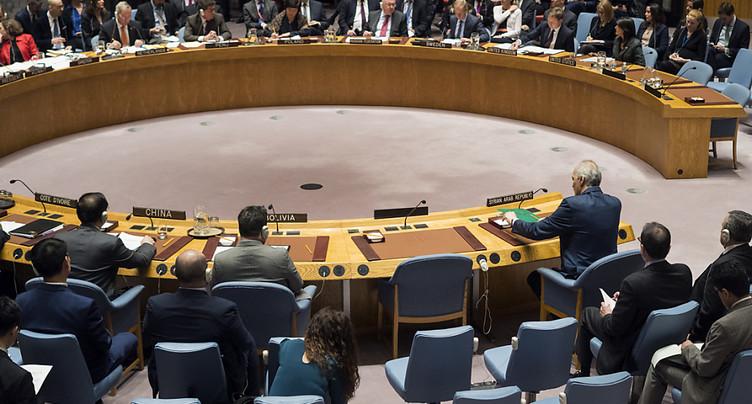 Le Conseil de sécurité « réclame » un cessez-le-feu immédiat en Syrie