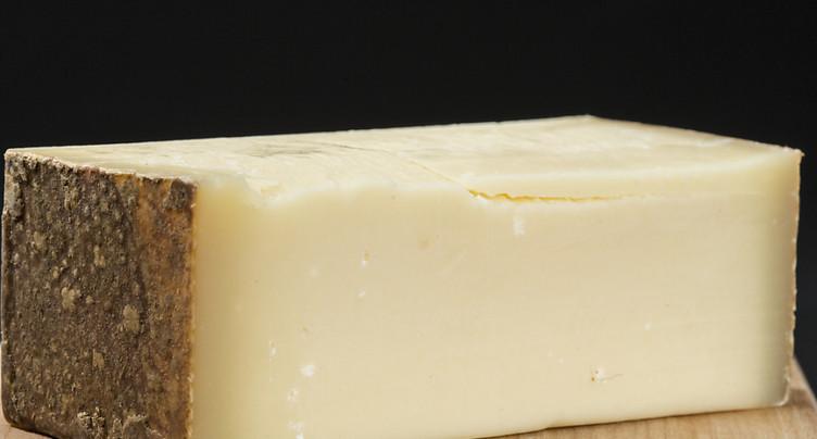 Un tiers du fromage consommé en Suisse est importé