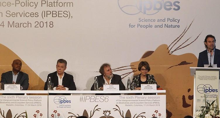Un rapport confirme le déclin de la biodiversité en Europe