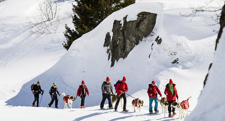 Une personne extraite vivante d'une avalanche au Grand-St-Bernard