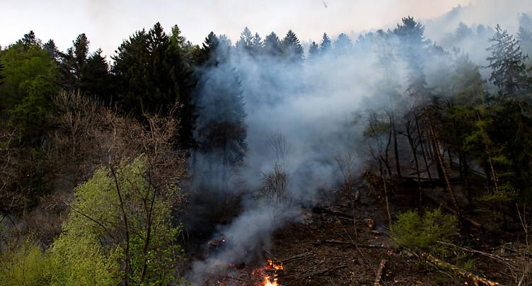Risque accru d'incendie de forêt