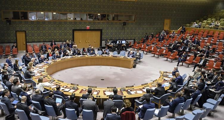 Partie de campagne en Suède pour le Conseil de sécurité