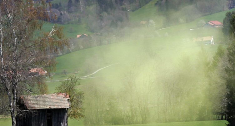 Une application pour étudier les allergies aux pollens en Suisse