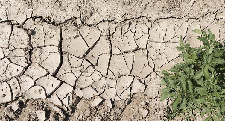 La pression sur les sols continue de s'aggraver en Suisse