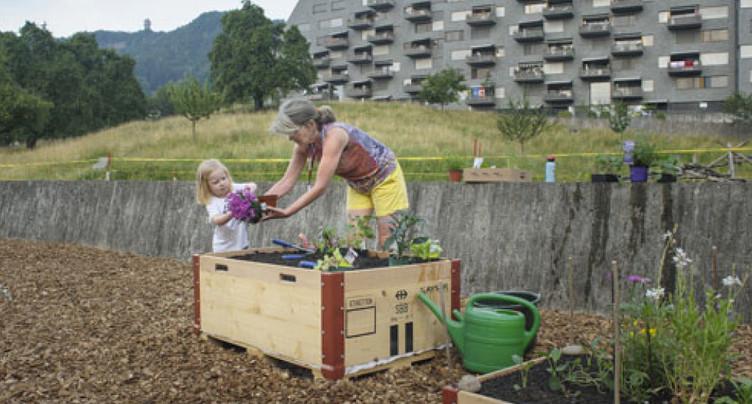 Promouvoir la biodiversité dans son propre jardin et pleine ville