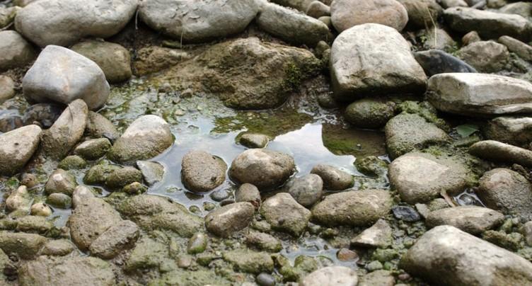Le niveau des eaux reste bas dans les rivières suisses