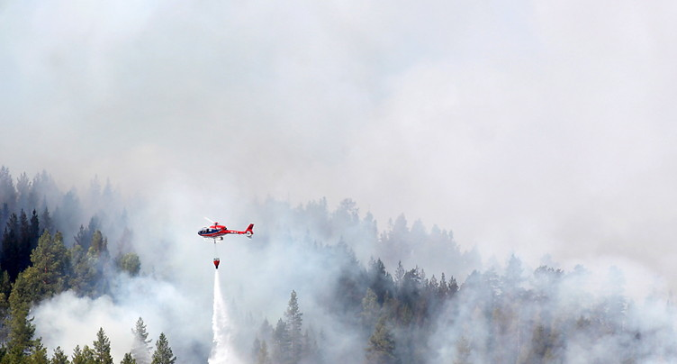 La Suède en proie à des dizaines de feux de forêt
