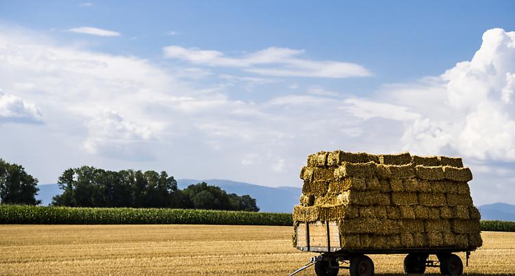« Oui » aux deux initiatives agricoles et aux pistes cyclables
